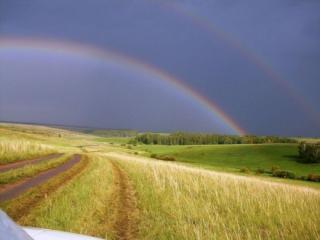обои Дорога в поле под радугой фото