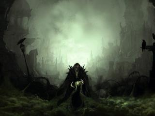 обои Колдун и вороны фото