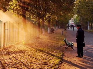 обои Лучи солнца на городской аллее фото