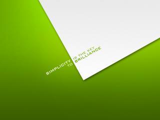 обои Цвета белый и зеленый фото