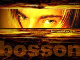обои Bosson глаза фото
