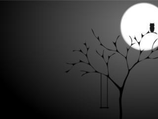 обои Сова на дереве в полнолунии фото