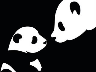 обои Чёрно-белые панды фото