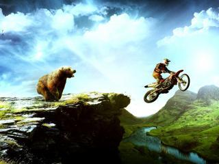 обои Медведь напугал мотоциклиста фото