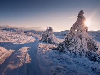 обои Крымские дороги фото