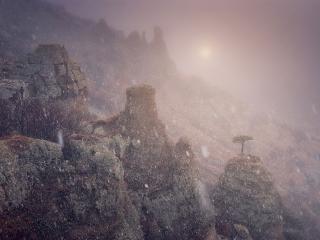 обои Снег в горах фото