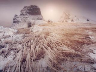 обои Снег в Крыму фото
