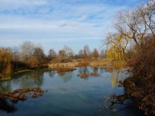 обои Заброшенный осенний пруд, на окраине фото