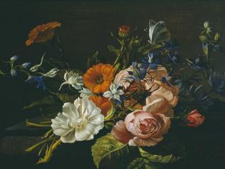 обои Букет садовых цветов фото