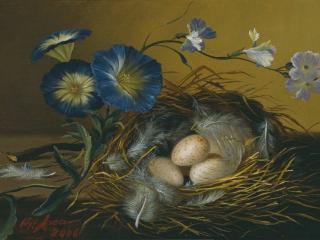 обои Натюрморт - Птичье гнездо фото