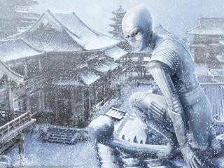 обои Ниндзя зимой в метель фото
