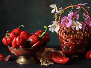 обои Натюрморт - Цветы в корзине и перец фото