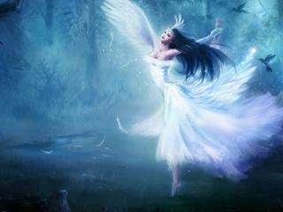 обои Танец светлой феи в темном лесу фото
