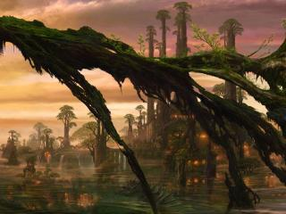 обои Фантастические деревья на болоте фото