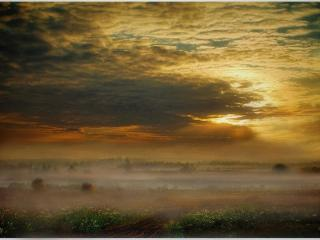 обои Туман на лугу и тучи фото
