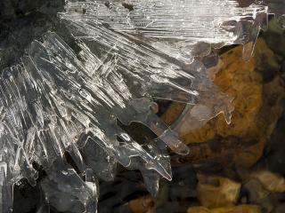 обои Весенние льдинки фото