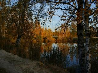 обои Природное зеркало осеннего пруда фото