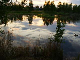 обои Деревенский пруд летом фото
