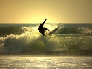 обои Серфингист и волна фото