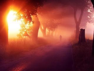 обои Туманная дорога фото