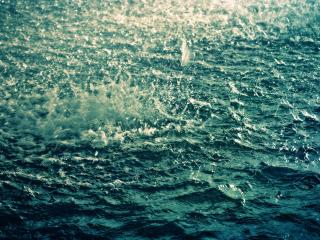 обои Дождь на воде фото