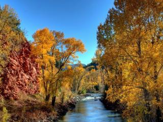 обои Скалы и деревья у лесной речки фото