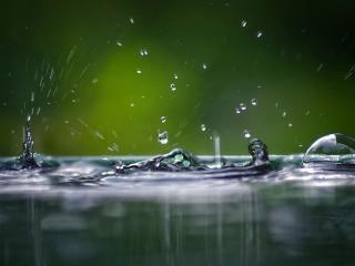 обои Танец дождя фото