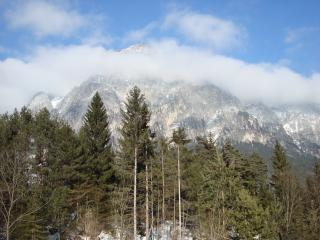 обои Величие австрийских альп фото