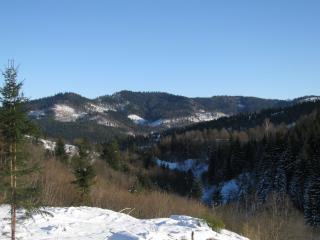 обои Вид карпатских холмов фото