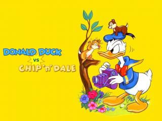 обои Мультфильмы Walt Disney - Дональд Дак фото