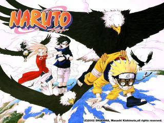 обои Naruto черный орел фото