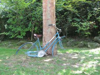обои Ретро велосипед у дерева фото
