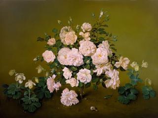 обои Розы и улиточка фото