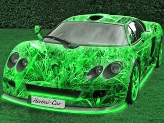 обои Автомобиль травяной фото