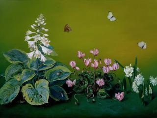 обои Цветы,   бабочки и улитка фото