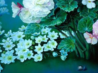 обои Оса на цветке фото