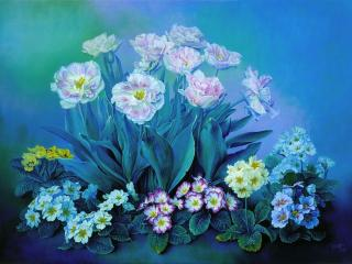 обои Сказочные тюльпаны и примулы фото
