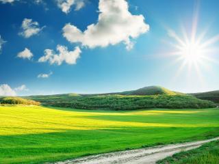 обои Дорога,   луга,   лес,   солнечный день фото