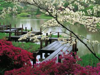 обои Японский сад,   плот у озера фото
