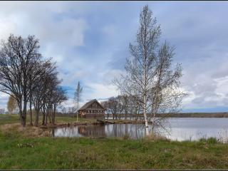 обои Весенний пейзаж у дачного дома фото