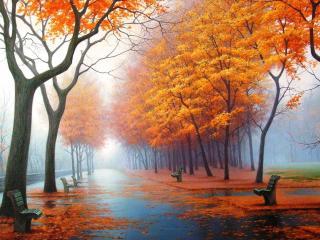 обои Осенний парк,   скамьи фото