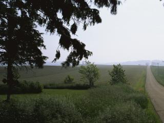 обои Дорога вдоль плодородных земель фото
