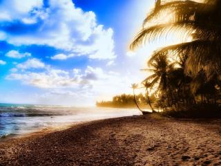 обои Побережье в тропиках под ярким небом фото