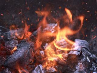 обои Маленькая история маленького огня фото