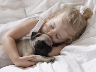 обои Девочка и щенок спят фото