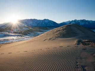 обои Забайкальские пески фото