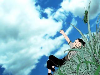 обои Naruto на травке фото
