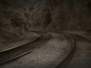 обои для рабочего стола: Железная дорога,   лес,   поздний вечер,   черно-белое фото