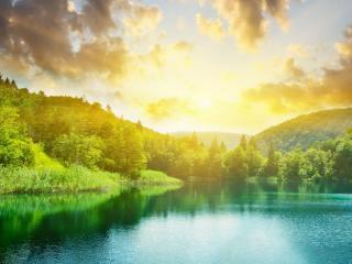 обои Закат освещает летний лес и озеро,   зелень фото