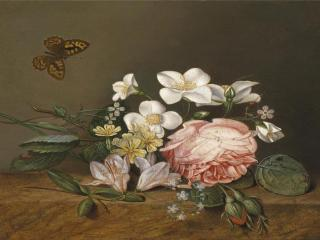 обои Бабочка и букет цветов фото